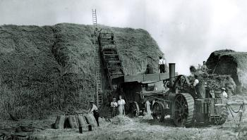 The threshing process in 1939 [Z50/84/77]